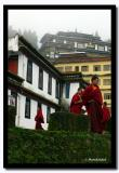 Monks at Rumtek Gompa, Sikkim