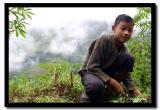 Cutting Shrubs with Rolling Hills behind, Pakang