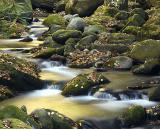 Smoky Mountains 2003