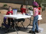 The Lemonade Stand #2
