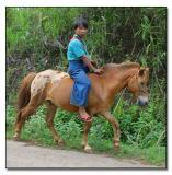Silver Palaung Boy on pony