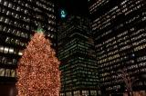 Toronto towers and Christmas tree.jpg