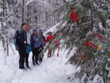 FA 50 Traditional Christmas Tree