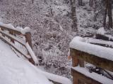 Missing Runner? - Poo Poo Trail Bridge