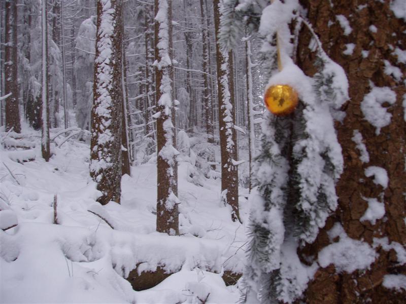 Ornament Marking Trail