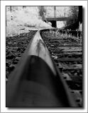 The Rail by dave v