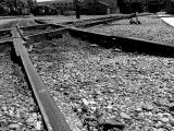 Steel Rails by Bill Borne