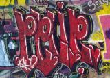 pplip