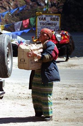 tibetan woman.jpg