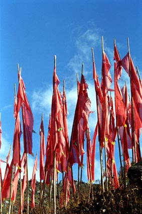 red prayer flags.jpg
