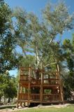 Pocatello Zoo's Tree House DSC_0138.jpg