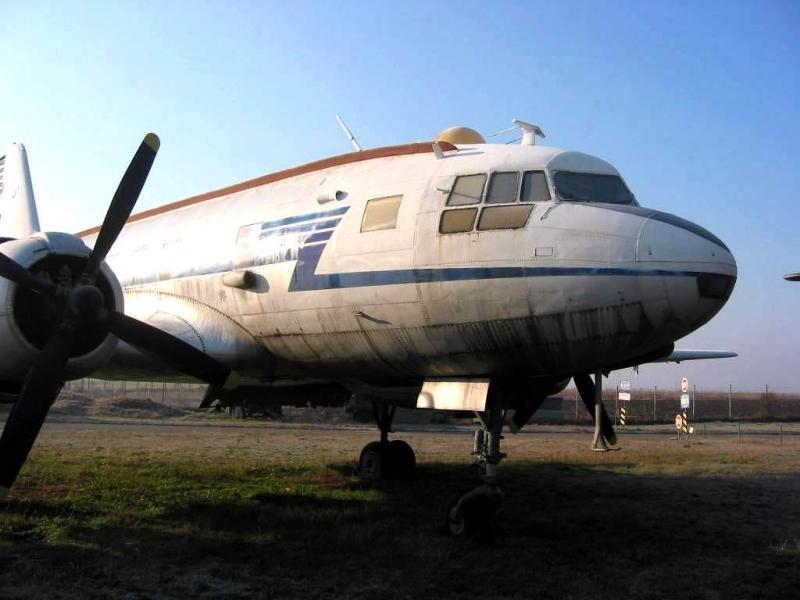 IL-14