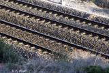 Les rails - le chemin vers la Côte d'Azur