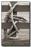 Rope & Rail
