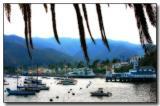 Harbor & Town