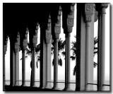Columns & Palms