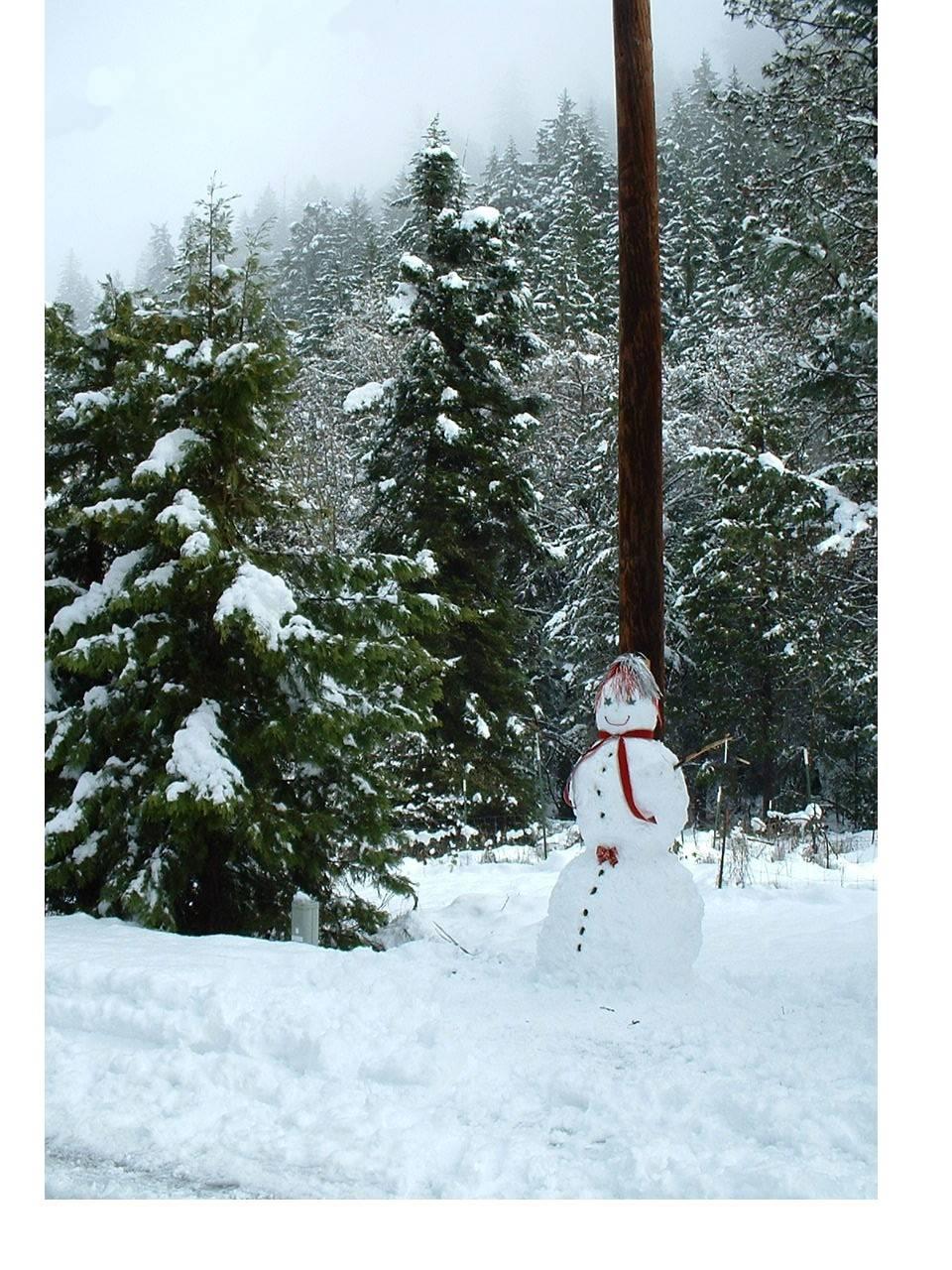 Bevs Snowman