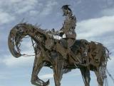 Don Cooper: Equestrian