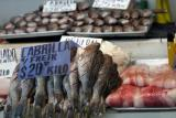 Photo of some very fresh seafood in the market.