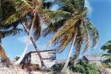 View from Hopetown, Abaco Beach