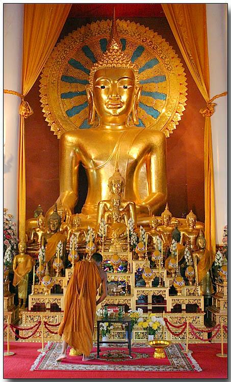 Temple monk - Wat Chedi Luang, Chiang Mai