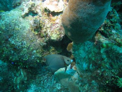 Belize0041.jpg