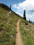 Trail to Noble Knob