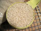 1 c. sesame seeds