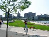 Grass at the Hudson River Park