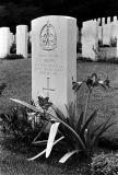 War Grave V