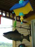 Fishfeeder