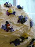 Steph's Cake