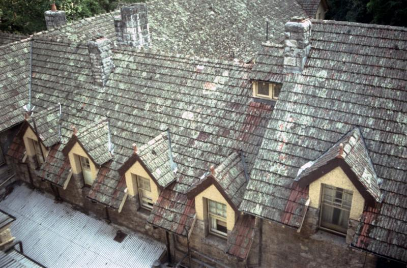 The old roof of Caves House