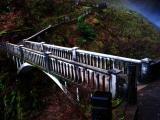 Bridge at Multnomah
