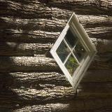 Window in Logs