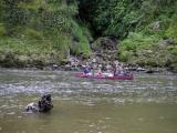 Other canoeists
