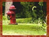 Fire hydrant art.jpg(430)