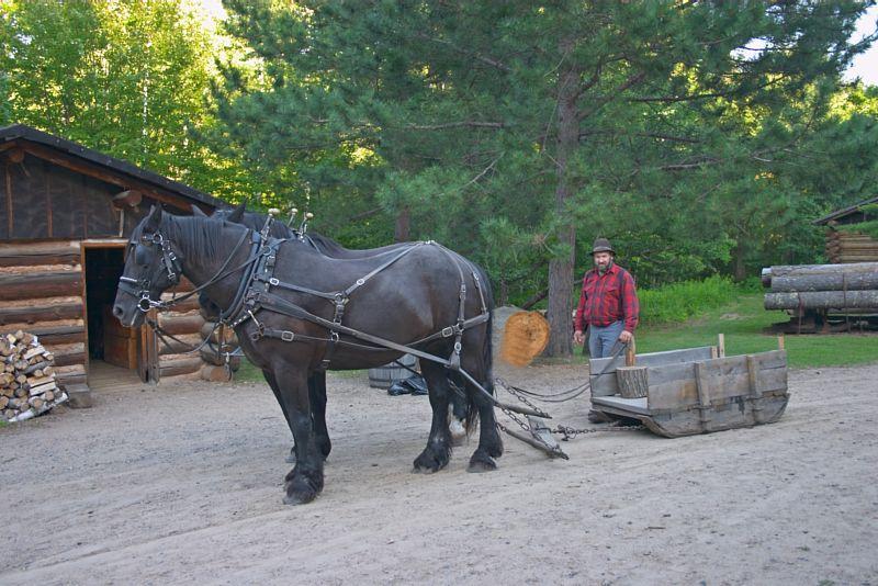 {Q-E}T3805 Horses and Sled.jpg