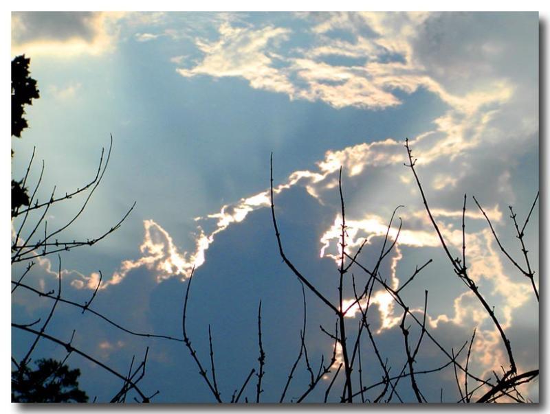08 18 03 sky with silhouette before storm, olyuz.jpg