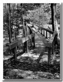 06 22 03 flat foot bridge, canon 10D.jpg
