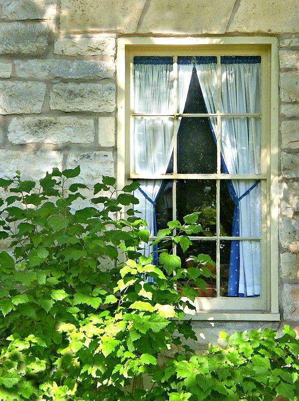 08 17 04 window landmark house, Minolta A1.jpg