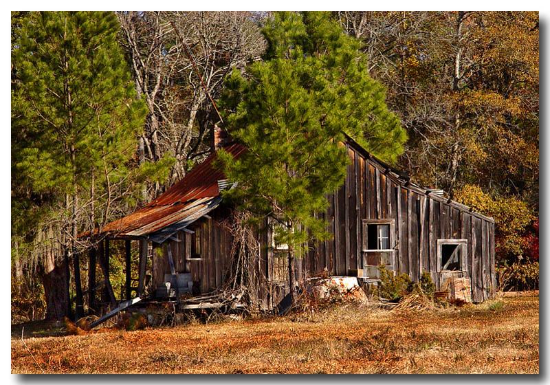 12 19 03  old shack,Sony F717 .jpg