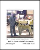 Anatolian Shepherd Dog Club of America - National Specialty - Morrow, Ga, September 16, 2004