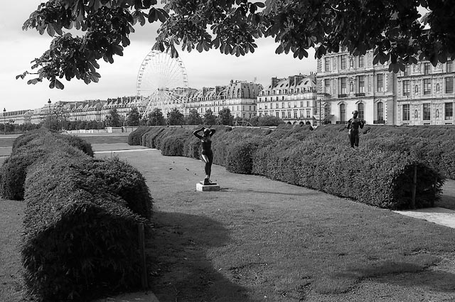 Gardens Of The Tuileries - GT1L2315