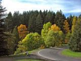 Portland-Park.jpg