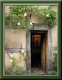 Door (buzzed)