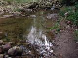 Reflective Stream.jpg