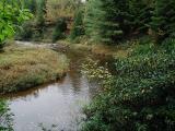 Lazy River.jpg