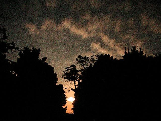 Moonlit watercolor.jpg