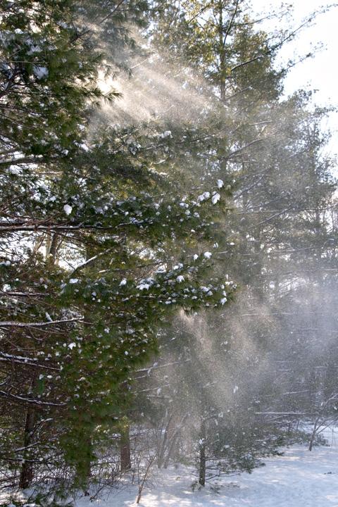 Snowbeams.jpg